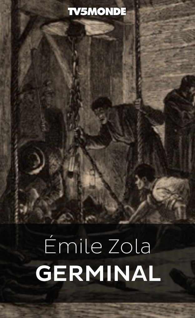 an analysis of the lecturing tone in la dbcle a novel by mile zola