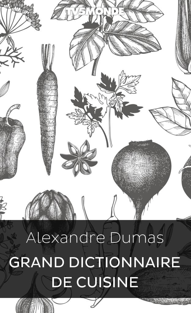 Grand dictionnaire de cuisine biblioth que numerique - Dictionnaire de cuisine alexandre dumas ...